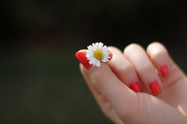 自律神経を刺激する 爪もみ療法